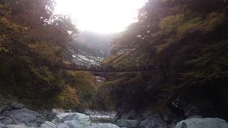 かずら橋を川から