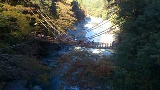 祖谷渓谷のかずら橋