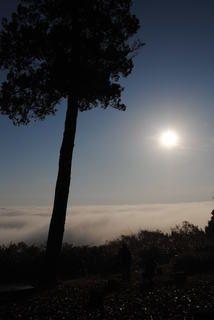 日が高くなった霧の海展望台