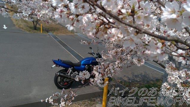 桜とバイクを上から撮影する