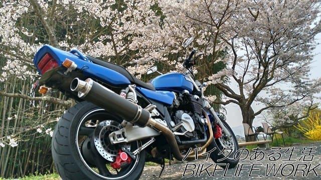 バイクの右から桜を見上げて撮った写真