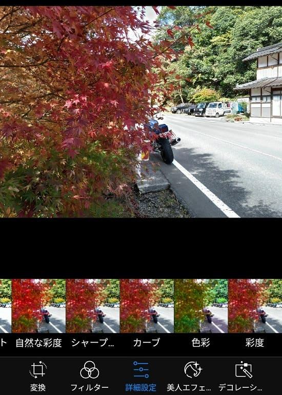 スマホで撮影した紅葉の写真