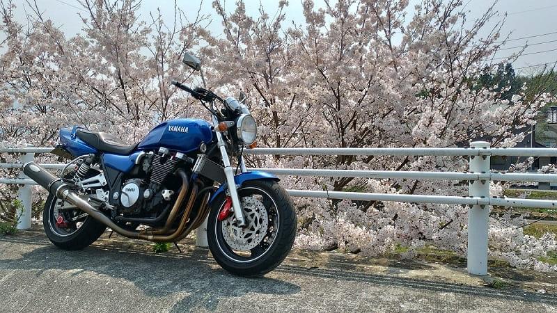 桜のお花見ツーリング